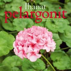Ihanat pelargonit