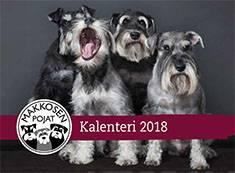 Makkosen poikien kalenteri 2018
